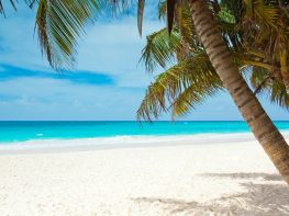 cayman-islands-beach