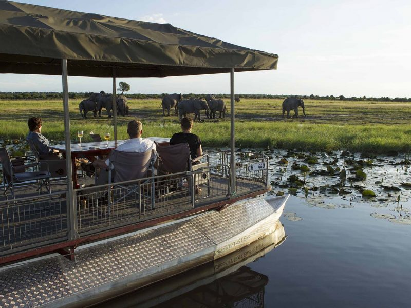 chobe-game-lodge-river-cruise