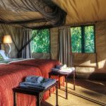 moremi-safari-camp-family-suite