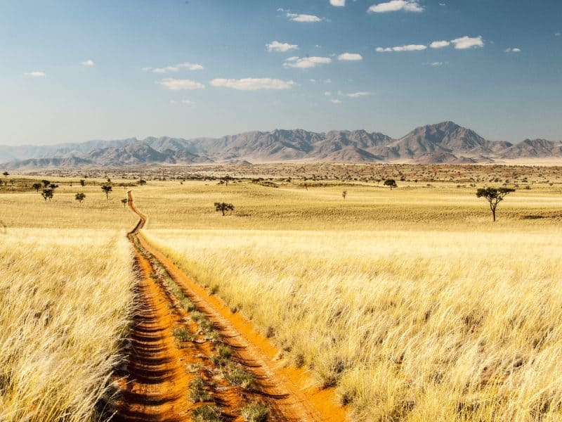 namibia-safari-trail