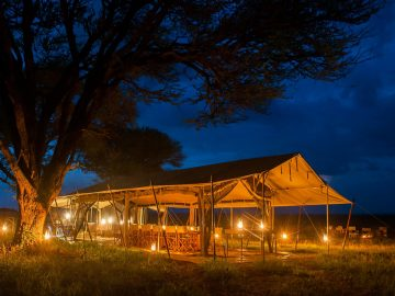 sarengeti-safari-camp-dining-area
