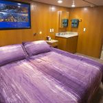 odyssey-deluxe-stateroom
